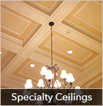 Trimroc Specialty Ceiling Gallery